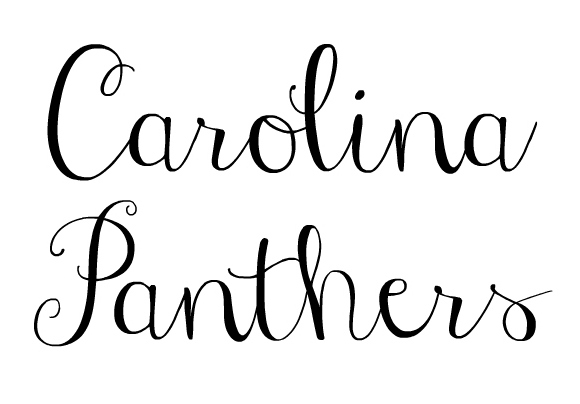 charlotte north carolina, travel guide, north carolina blogger, style on a budget, carolina panthers