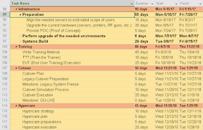 SAP Project Plan MPP