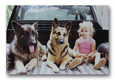 Child with two adult German Shepherds