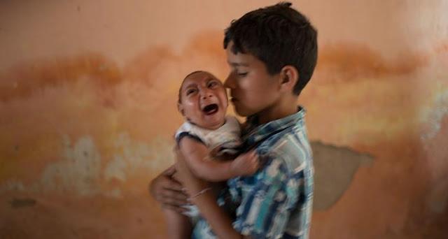 Penyakit Zika di Indonesia