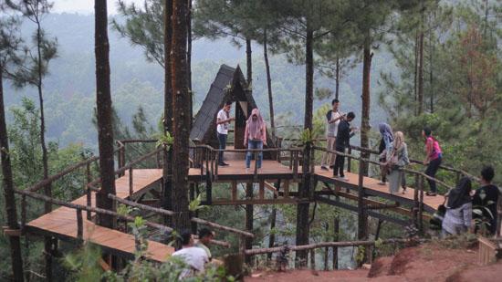 rumah pohon Pabangbon bogor