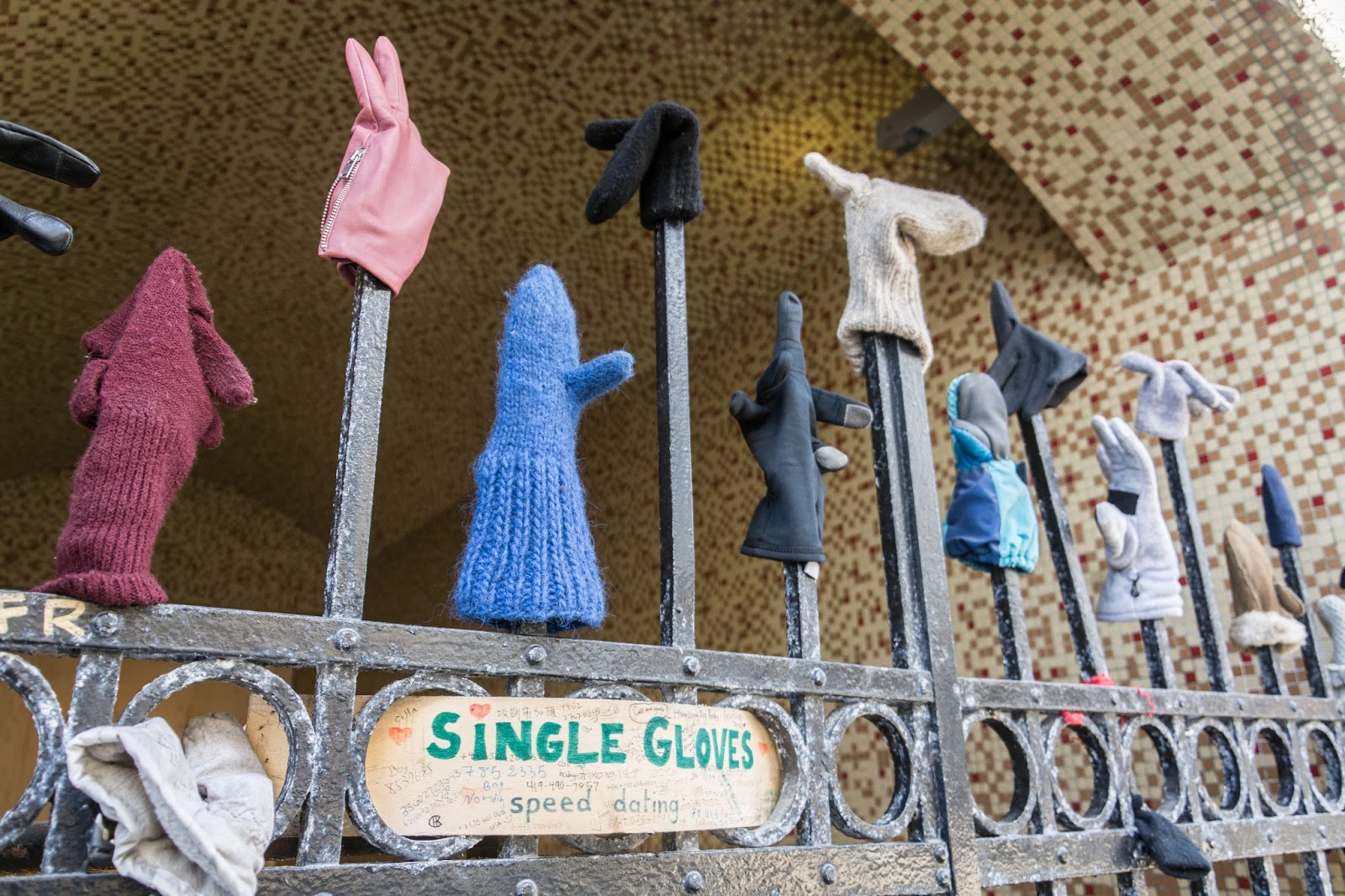 single handschoenen speed dating Reykjavik