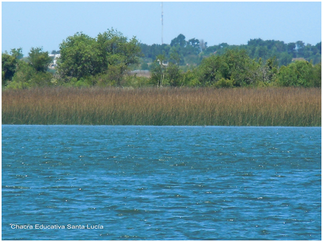 Humedales del Río Santa Lucía - Chacra Educativa Santa Lucía