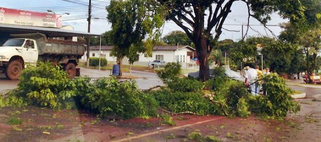 Roncador é atingido por chuva e ventos fortes durante a madrugada