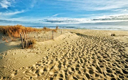 Siebert Realty Sandbridge Beach Virginia Beach Rentals VA