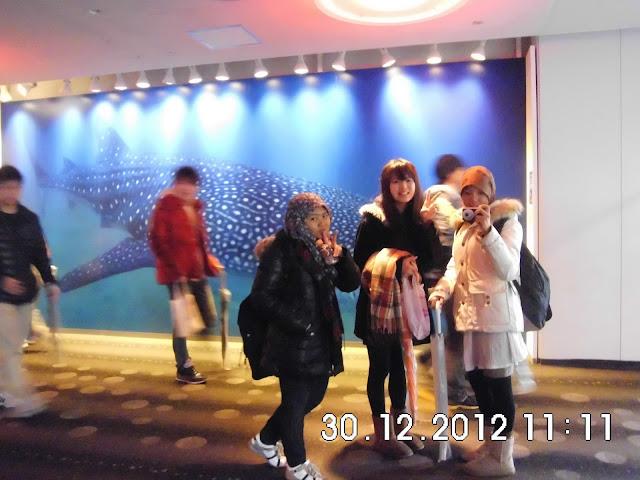 Aquarium Terbesar di Osaka - Kaiyukan