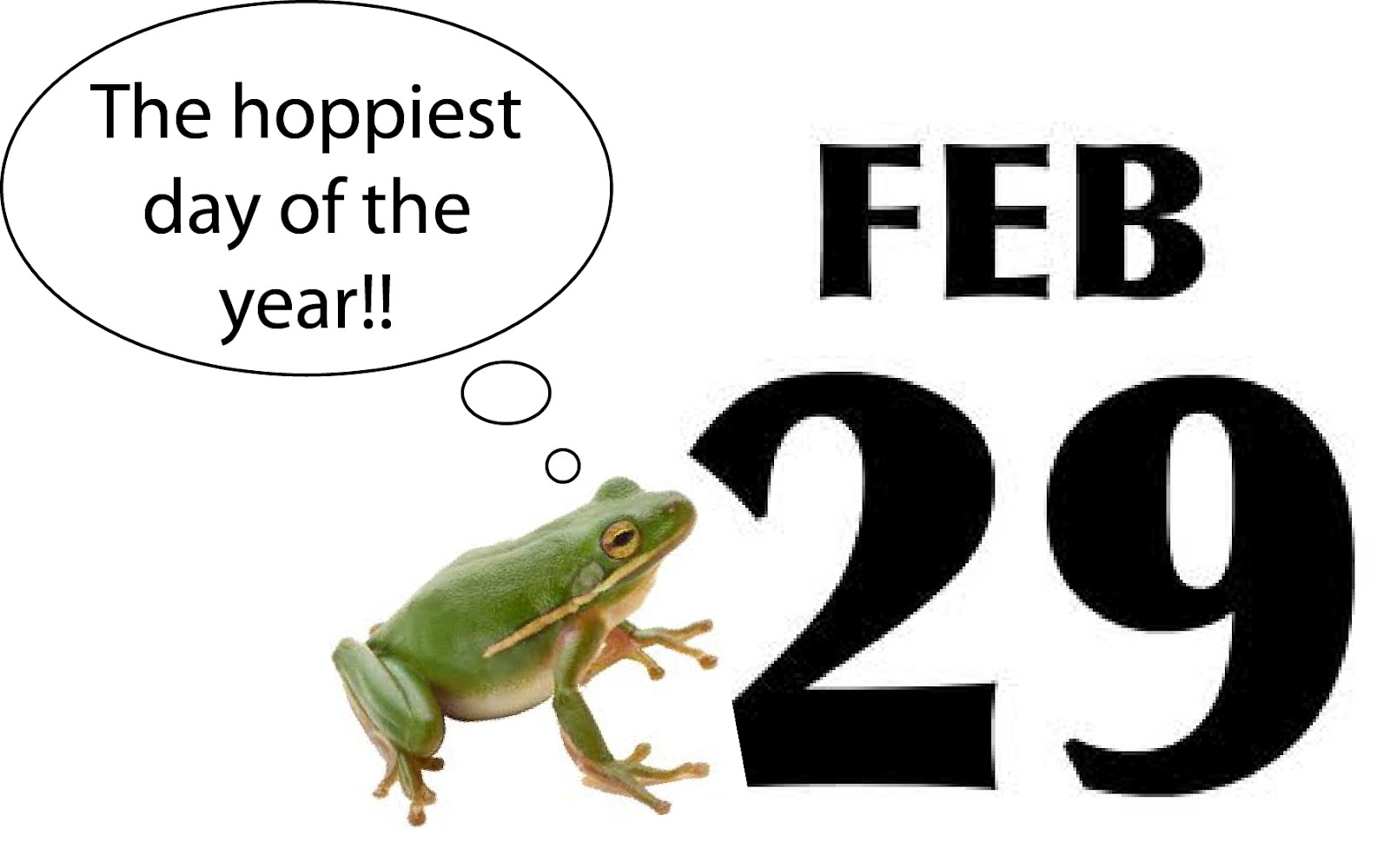 1000  images about Leap Day - February 29 on Pinterest | Leap day ...