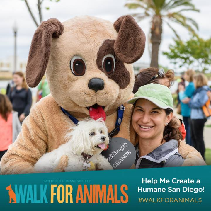 Save On Registration to SD Humae Society's Walk for Animals On May 5!