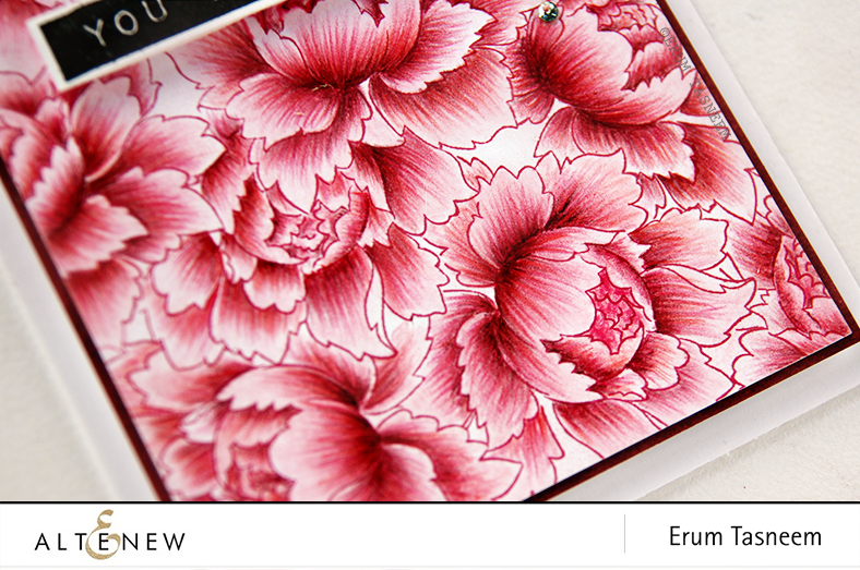 Altenew Peony Bouquet pencil colored using Faber Castell classic pencils and Label Love stamp. @Altenew by @pr0digy0