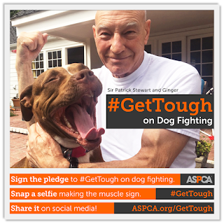 #GetTough ASPCA