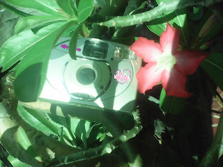 kamera roll