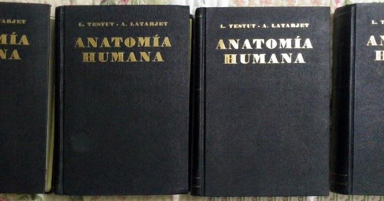 Anatomia Humana Juan Garcia Porrero Pdf