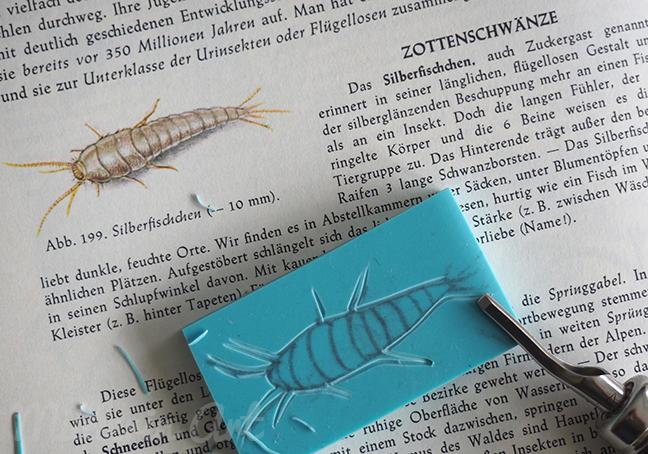 Silberfischchenstempel ©muellerinart