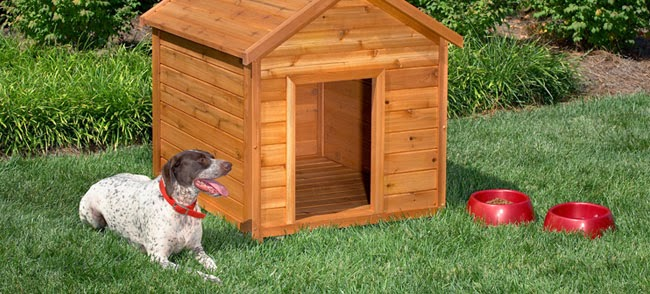 how to make a homemade dog house