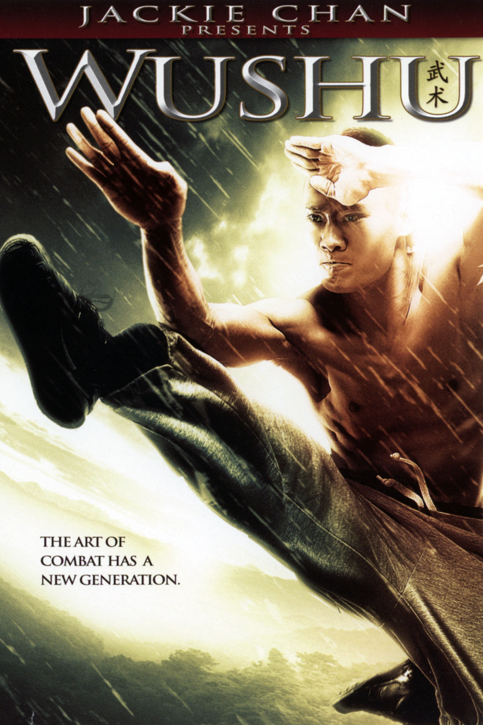 Wushu 2008 Hindi Dubbed 250MB WEB-DL 480p x264