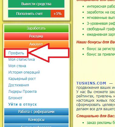 tushins.com букс