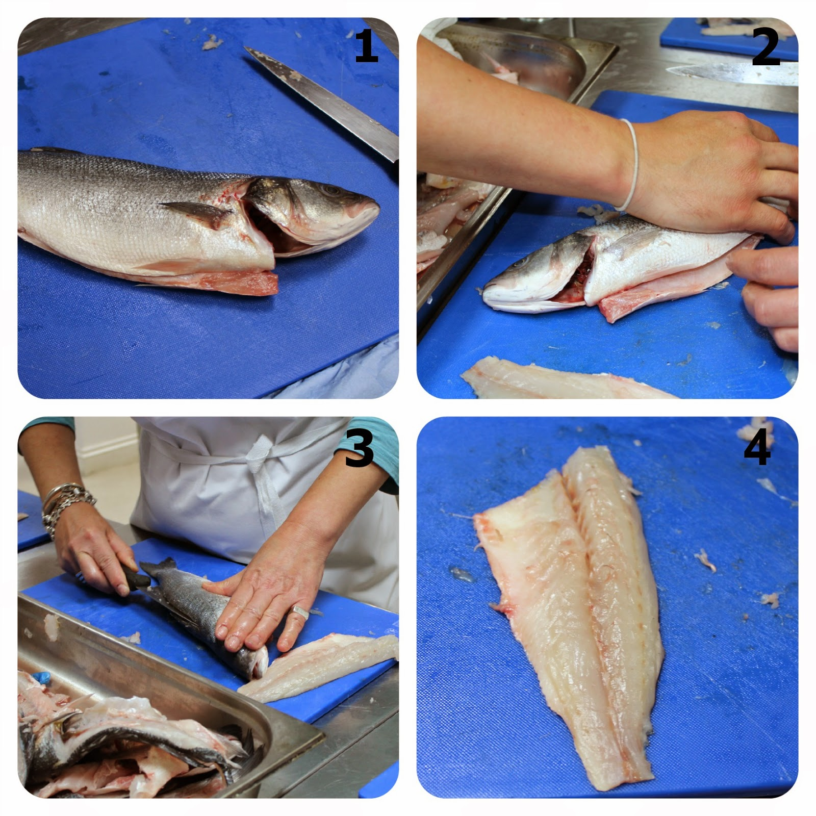 Sea bass filleted