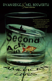 Second Acts in American Lives