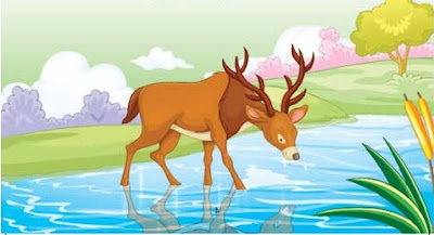 The stag saw his reflection in the stream water.