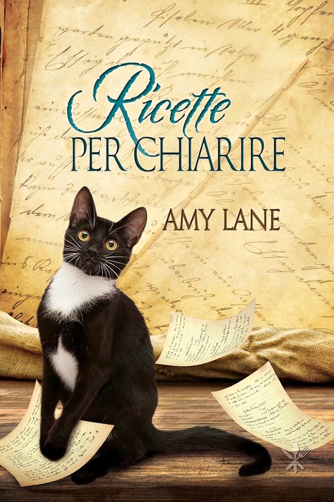 """Recensione: """"Ricette per chiarire"""" (Serie Il curioso ricettario di Nonna B #1) di Amy Lane"""