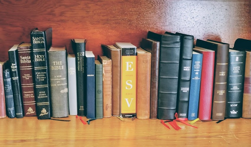 This is My Bible: Hunting for the Perfect Bible