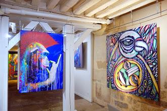 Expo : Animalement vôtre, dAcRuZ et Marko93, le street art de la rue à la toile - Espace Loft du 34 - Jusqu'au 3 avril 2016