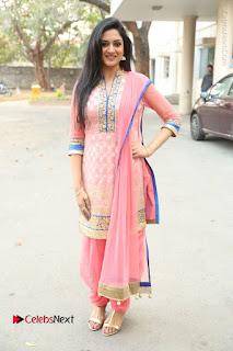 Actress Vimala Raman Stills in Beautiful Pink Salwar Kameez at (ONV) Om Namo Venkatesaya Press Meet  0242.JPG