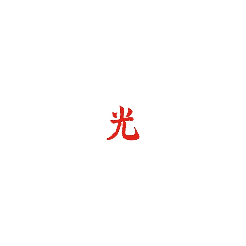 Image result for lupe fiasco dragos new vinyl art
