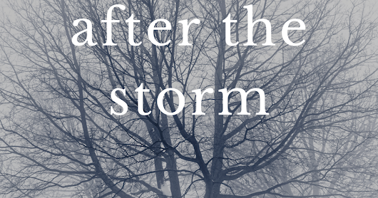 After the Storm: A Woodsview Christmas Story
