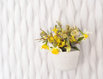 Spring flowers in hanging planter