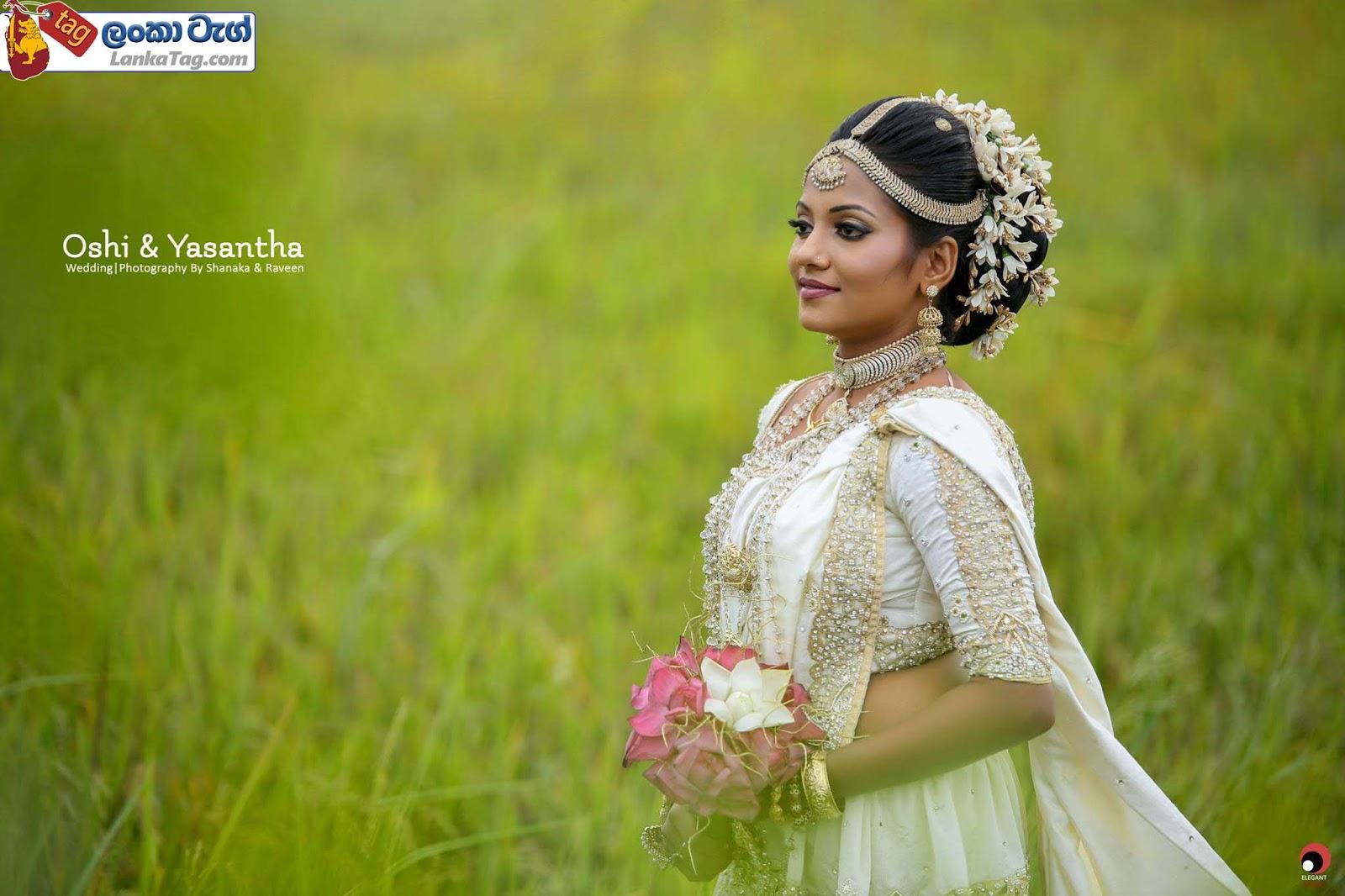 sri lankan wedding dress  26