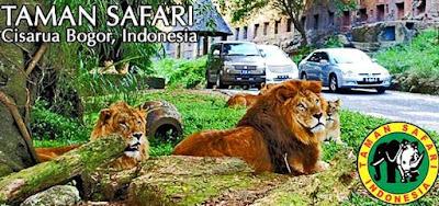 Tiket masuk taman safari