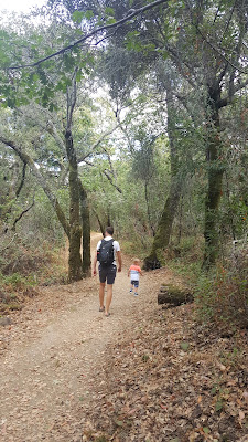 thornewood-preserve