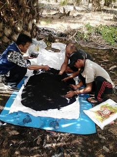 http://www.distributorpupuknasa.com/2019/03/jenis-pupuk-terbaik-untuk-kelapa-sawit.html