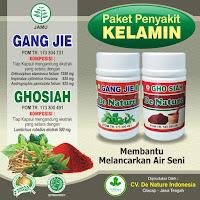 Cara Membuat Obat Sipilis Alami Asli Ramuan Indonesia