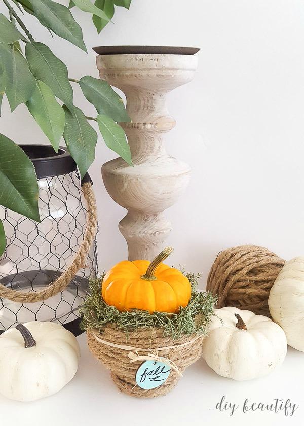 DIY pedestal rope bowl