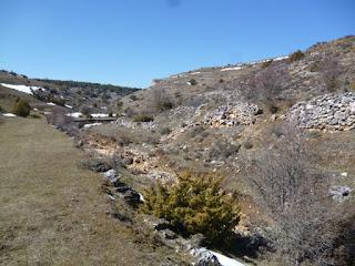 Arroyo de los Prados