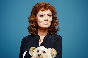 Susan Sarandon all their 'Oscars' I expect to smoke marijuana