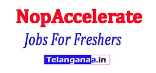 NopAccelerate Recruitment 2017 Jobs For Freshers Apply