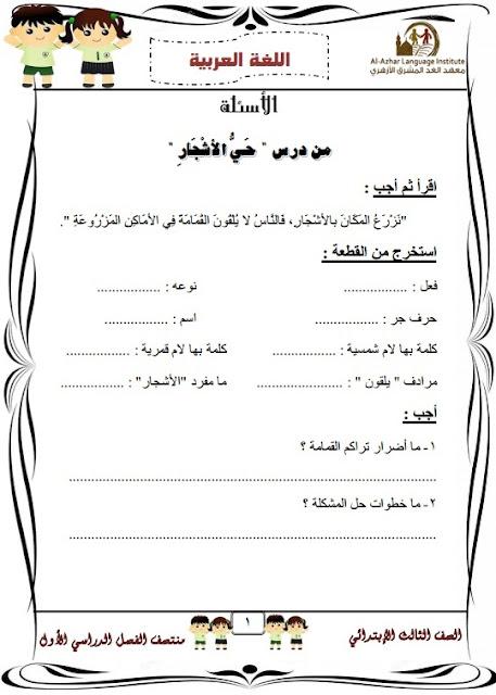 المراجعة النهائية لغة عربية للصف الثالث الإبتدائي