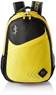 Skybags 25 Ltrs Black Casual Backpack