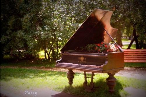 12 Ide Memanfaatkan Piano Rusak untuk Dekorasi Taman