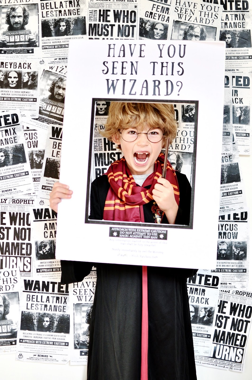 photo regarding Have You Seen This Wizard Printable named HOW Towards Application A HARRY POTTER BIRTHDAY Bash WILD GRIZZLY
