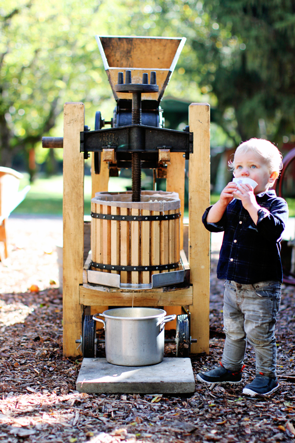 Making apple juice at Apple Ranch in Guerneville, CA