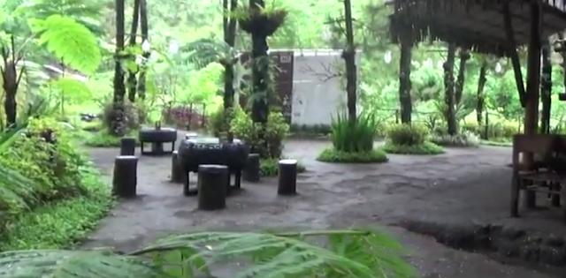 Pinus Café Ledok Ombo Poncokusumo Malang Jawa Timur