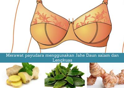Merawat payudara menggunakan Jahe, Daun salam dan Lengkuas