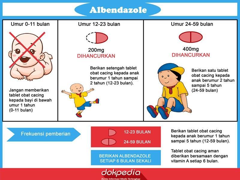 Albendazole - obat cacing
