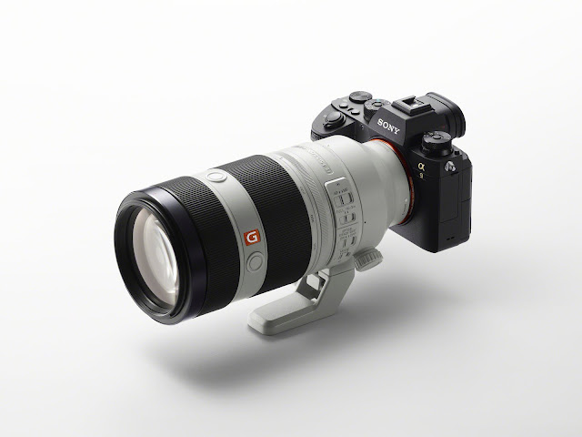 Sony a9: A Mirrorless Camera for Professionals