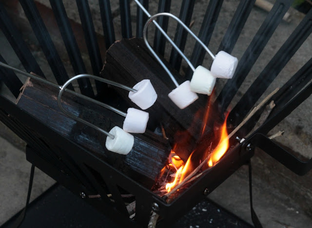 toasting marshmallows in a fire basket
