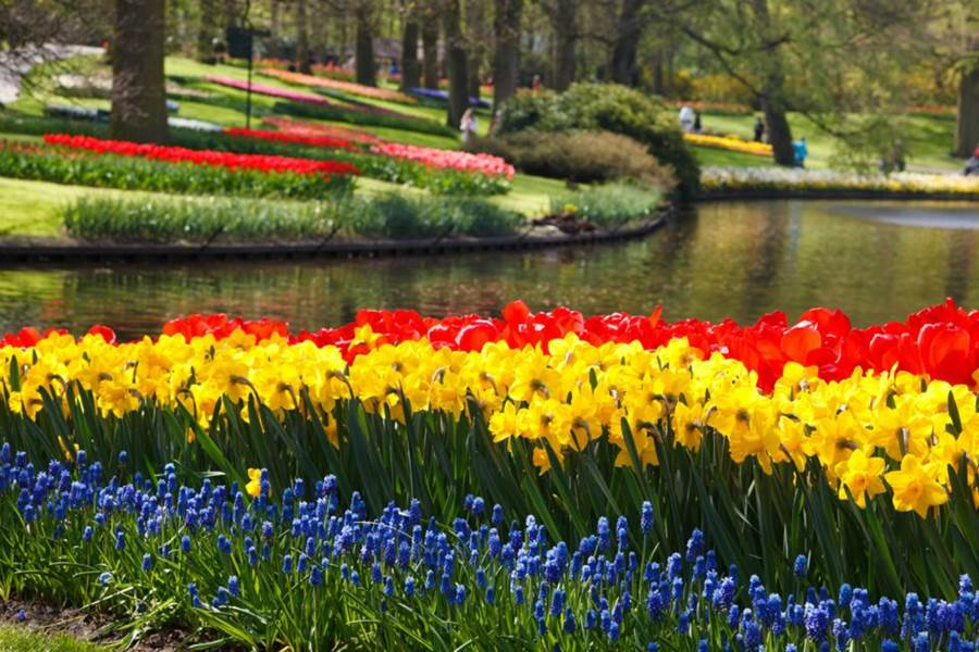 World S Largest Flower Garden Keukenhof Netherlands